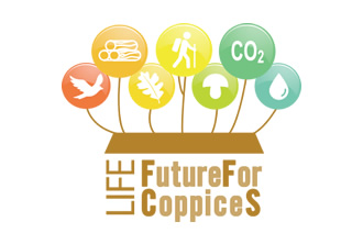 Life future for coppices